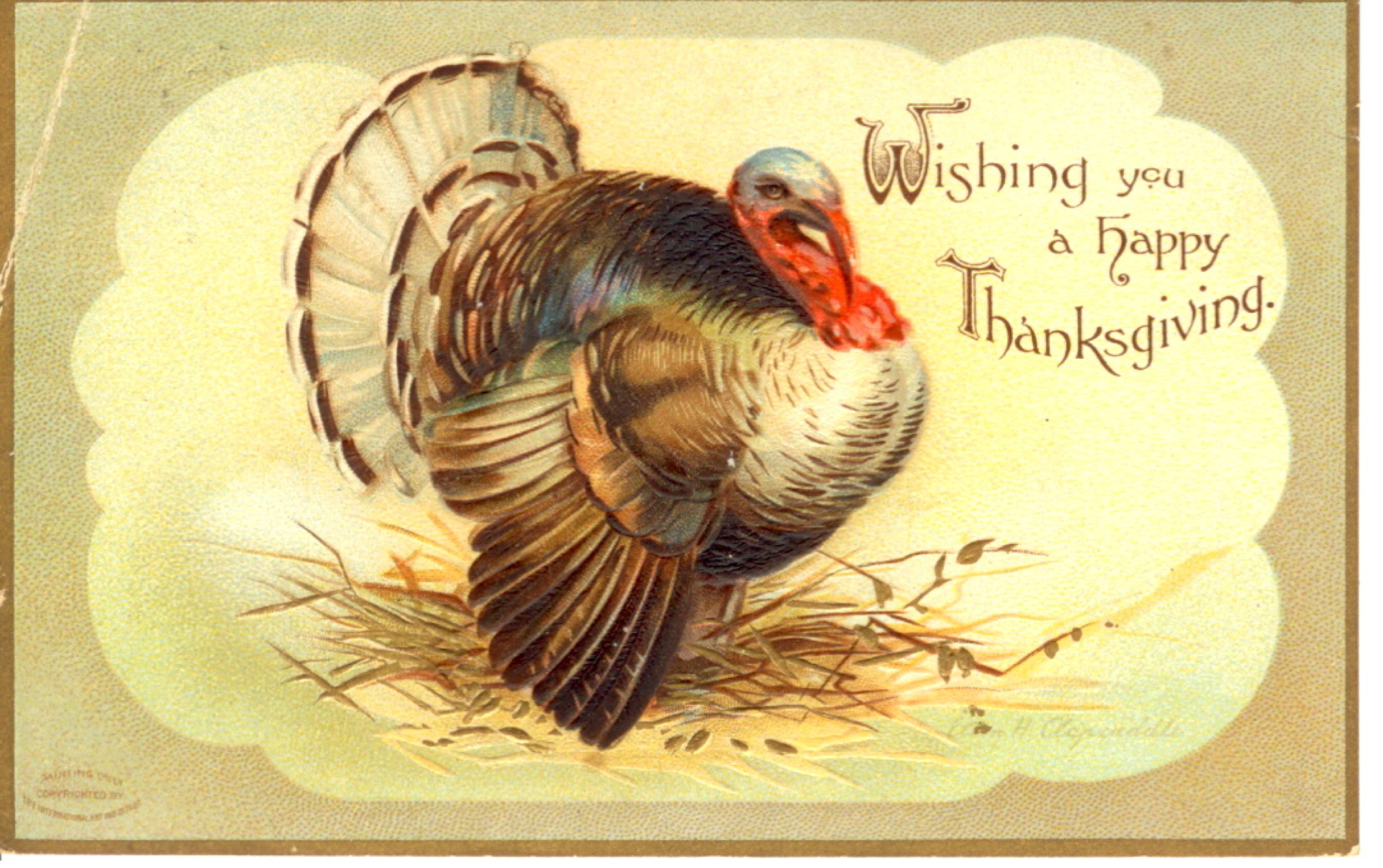 stock-graphics-vintage-thanksgiving-postcard-00161